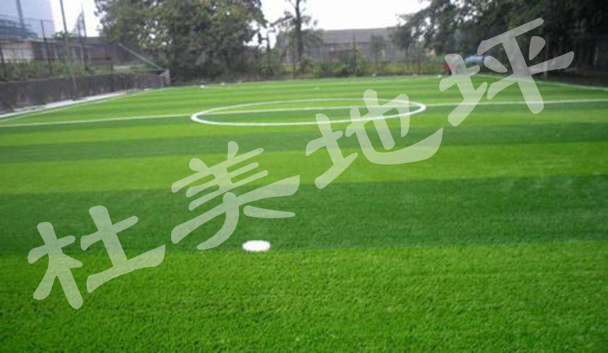 zu球场renzao草坪
