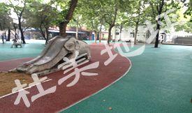 dong物园—彩色透水地ping